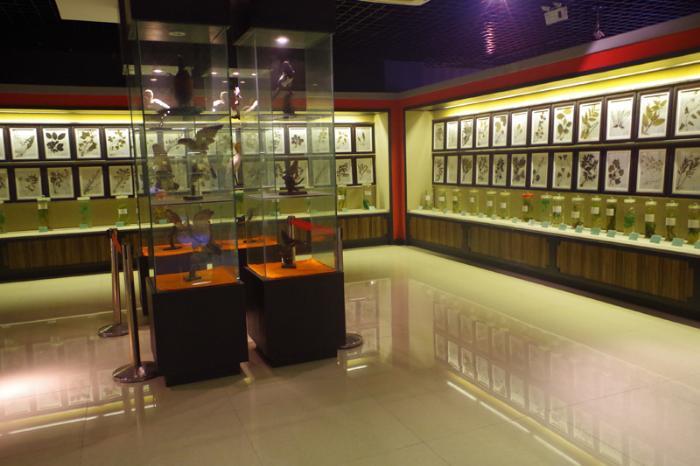 参观了药材、饮片交易区、中药材博览馆等场馆