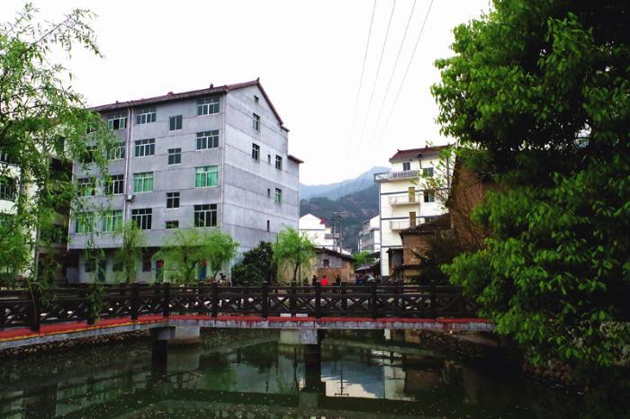 仁岸村村景