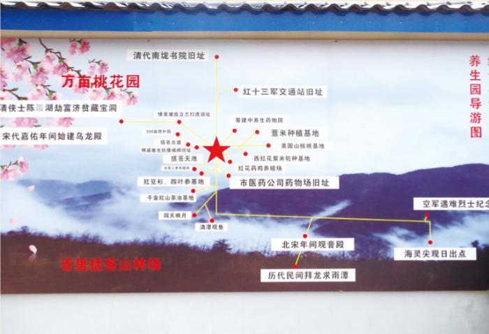 西红花养生园导游图