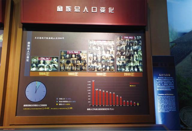 畲族总人口变化图