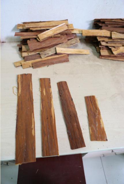 杉树皮小夹板
