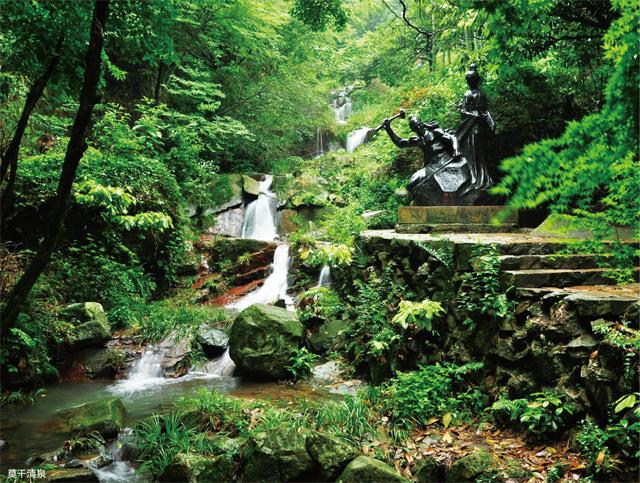 长寿秘诀:山林疗养与博物求知