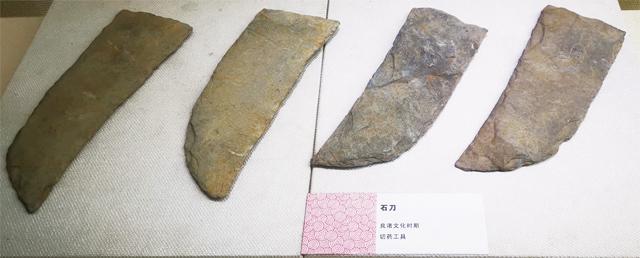 中草药博物馆